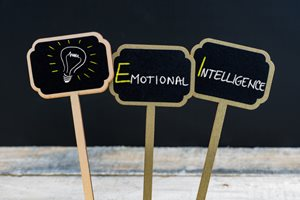 Read more about: The Importance of Emotional Intelligence in the Workplace